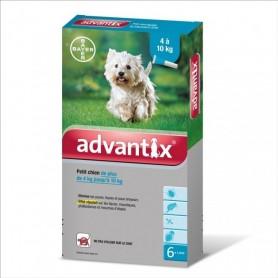 Advantix 100 petit chien boîte 1 mL