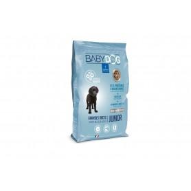BABYDOG chien de 25 à 40 kg