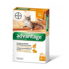 Advantage 40 chat moins de 4 kg boîte 0,4 mL
