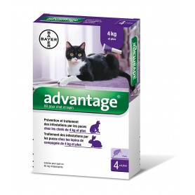 Advantage 80 chat plus de 4 kg boîte 0,8 mL